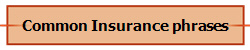 Common Insurance phrases